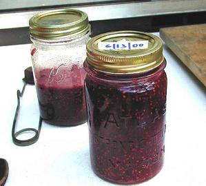 Summer in a jar – jam, jelly, marmalade and chutney – Make It from Scratch