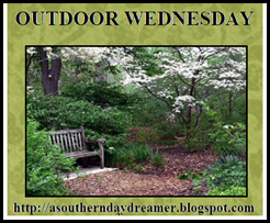 outdoor-wednesday-logo4