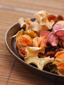 Make-Your-Own-Autumn-Potpourri-mdn