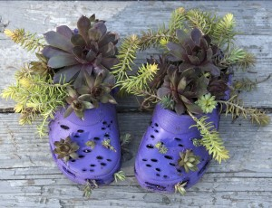 Old-Rubber-Footwear-Planters-Creative-Ideas-Use-Old-Shoes-to-Plant-Flower