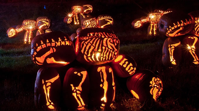 Thursday 13 – Happy Halloween Light Shows!