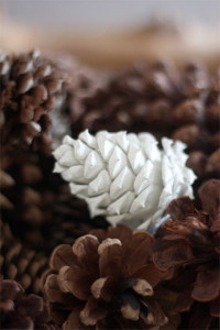 Paint_Dipped_Pinecones5