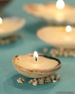 tvm1146_042506_shellcandle_xl