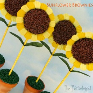 sunflower-brownies-